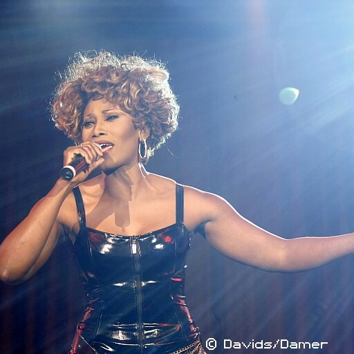 Simply the Best - Das Tina-Turner-Musical